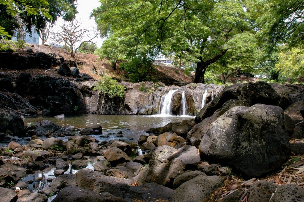 園内を流れる川の滝