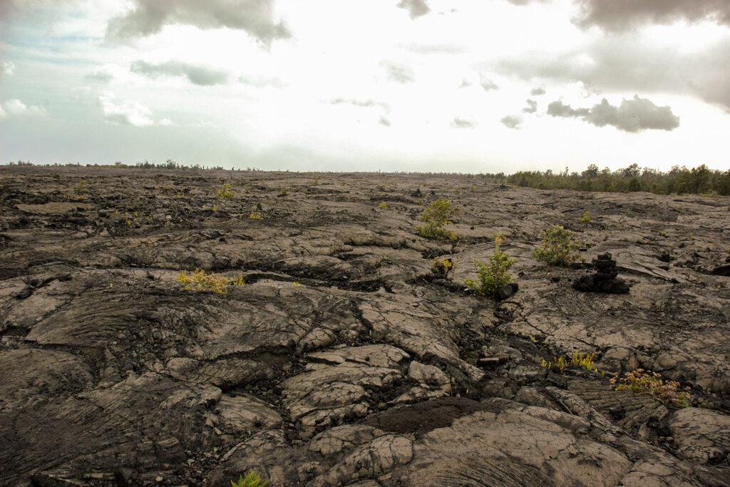 一面の溶岩
