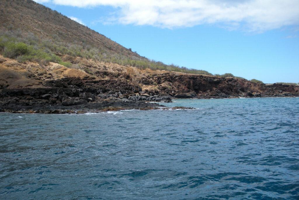 ウミガメが多いことで有名なレッドヒル